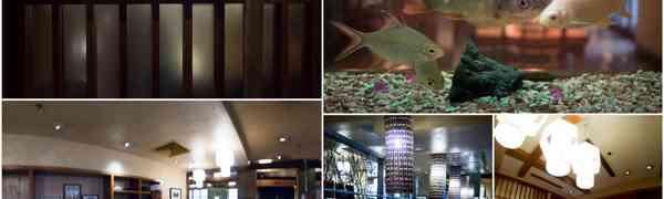 KY eats – Genji Japanese Restaurant, PJ Hilton